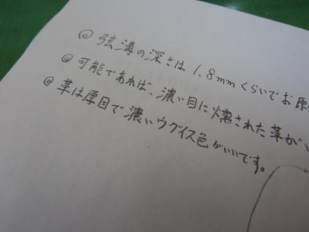 IMG_3243